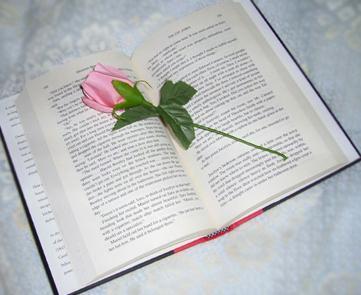 Muere Francisco Umbral, disertación sobre la literatura